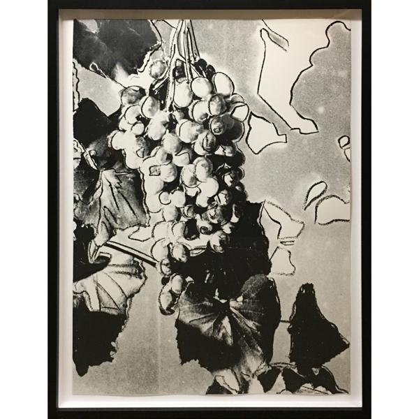 ANDY WARHOL Grapes,1979