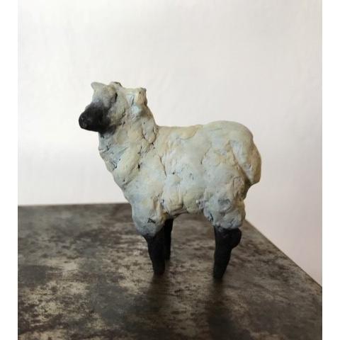 Sheep Tiny