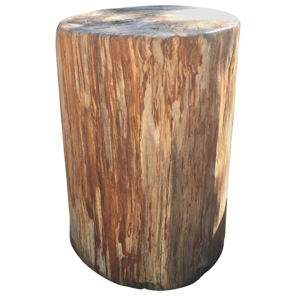 Large Red Petrified Wood Side Table