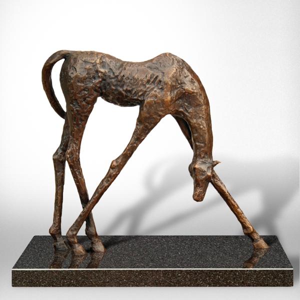 Horse AP