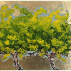 Old Vines 2699