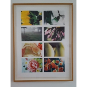 Framed Photograph Panel