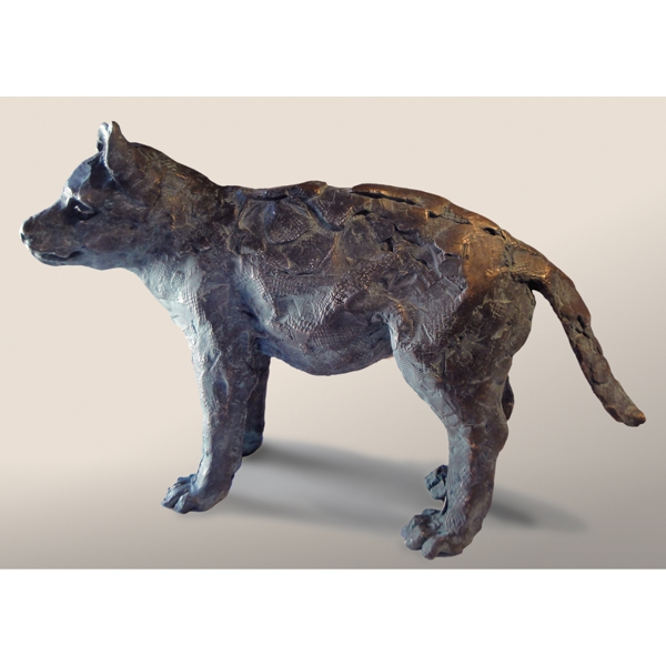 Wolf Cub 3/7