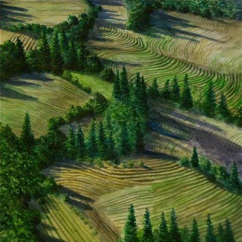 Napa Hills Aerial